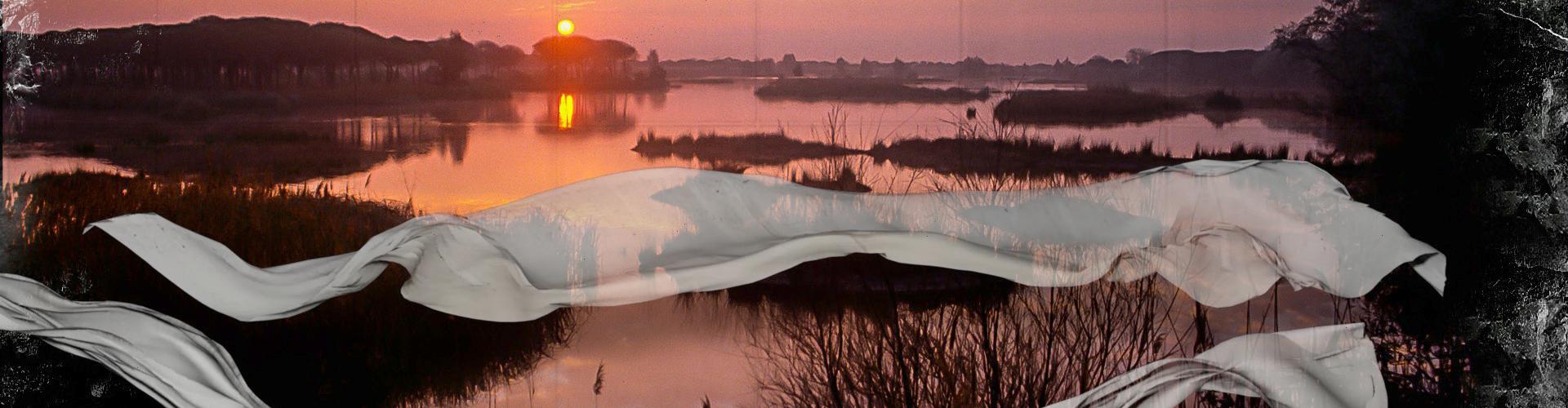 Multivisión Vídeo Mapping Doñana 50
